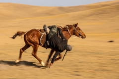 Kyrgyz Horsemanship